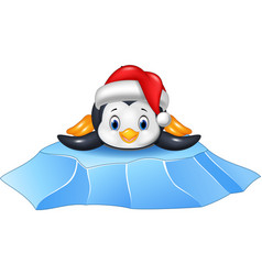cute baby penguin on ice floe vector image