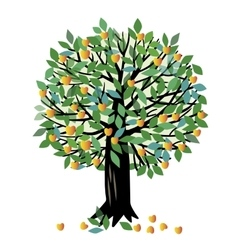 Apricot tree vector