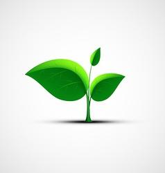 Green leaf logo vector image vector image