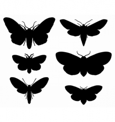 moths vector image vector image