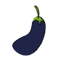 Drawing eggplant natural vegetable icon vector