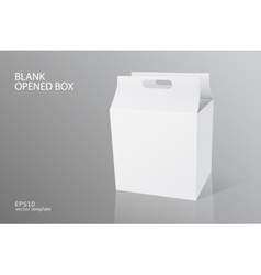 Blank packing opened box vector