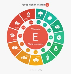 Foods high in vitamin e vector