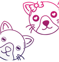 line cute cat couple animal together vector image vector image
