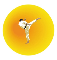 The the man shows karate on a bright background vector