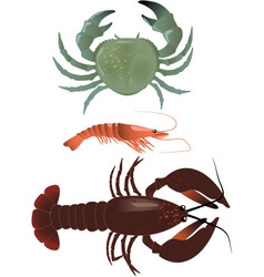 Crustaceans vector