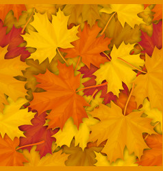 Fallen maple leaves pattern vector
