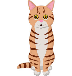 Cartoon funny cat isolated on white background vector