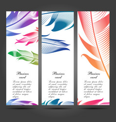 business cards with feathers for your design vector image