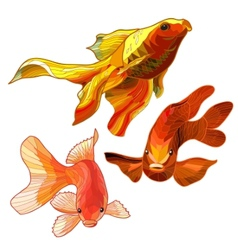 Set of gold fish vector