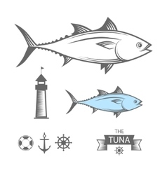 Tuna set vector