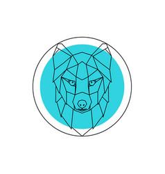 arctic fox head logo vector image