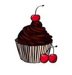 Chocolate cupcake with cherry isolated on white vector