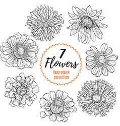 Hand drawn flowers collection vector image vector image