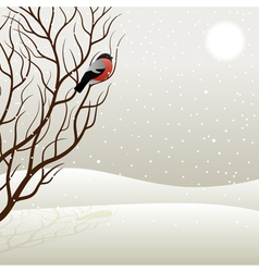 Tree and bullfinch vector