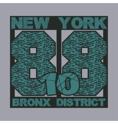 New york typography t-shirts vector