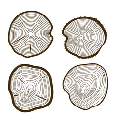 Tree rings set saw cut trunk web design style vector