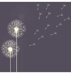 Dandelion flight purple vector