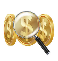 dollar and magnifying glass business vector image vector image