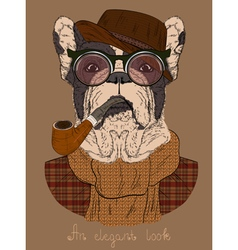 French bulldog with Tobacco Tube and glasses vector image