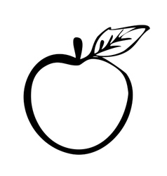 Hiqh quality apple drawn in outline vector image vector image