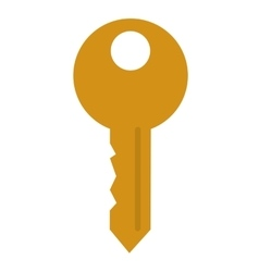 key with hole on top vector image