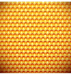 Honey comb vector