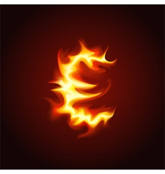 Euro sign of fire vector image