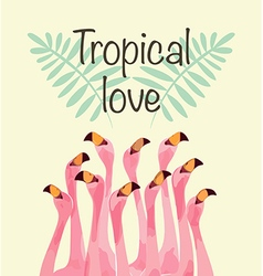 Flamingo for Tropical love vector image