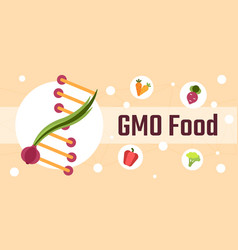 Genetically modified food vector