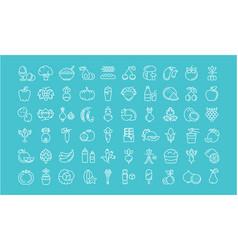 set flat line icons vegetarianism vector image vector image