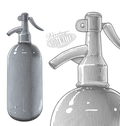 Vintage siphon bottle in engraved style vector