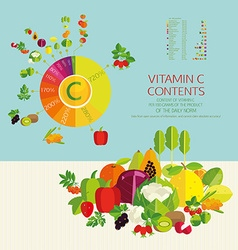 Basics of a healthy diet vector