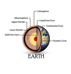 Earth structure vector