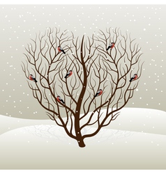 tree and bullfinches vector image