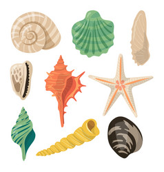 Shells of sea in sand aquatic icons in vector