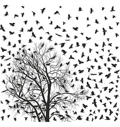 Flock of crows over tree vector