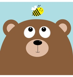 Bear grizzly big head looking at honey bee insect vector