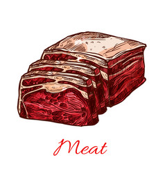 Raw fresh butchery meat slice isolated icon vector