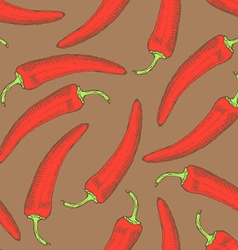 Sketch chilli pepper in vintage style vector