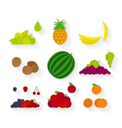 Different fruit flat icons vector