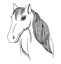 Hand drawn horse with long mane and bang vector