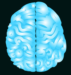 blue brain with nerve and isolated background vector image vector image
