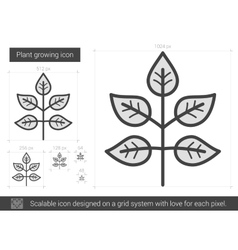 Plant growing line icon vector