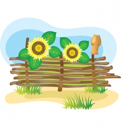wicker fence and sunflowers vector image