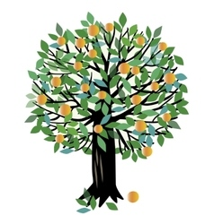 Peach or orange tree vector