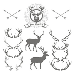 Set of deers silhouette deer head and antlers vector image vector image