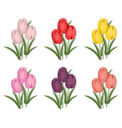 Vintage tulips flowers set background vector