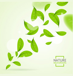 Realistic fly green leaves pattern background vector