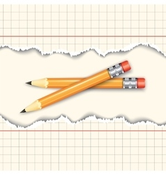 Pair of pencils vector